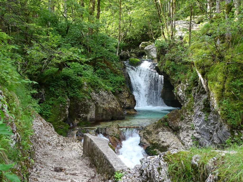 Šunik water grove